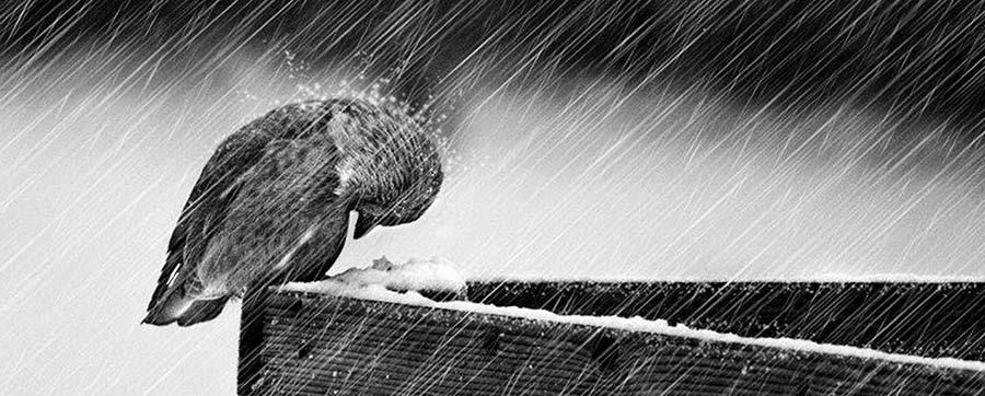 pioggia-su-di-noi